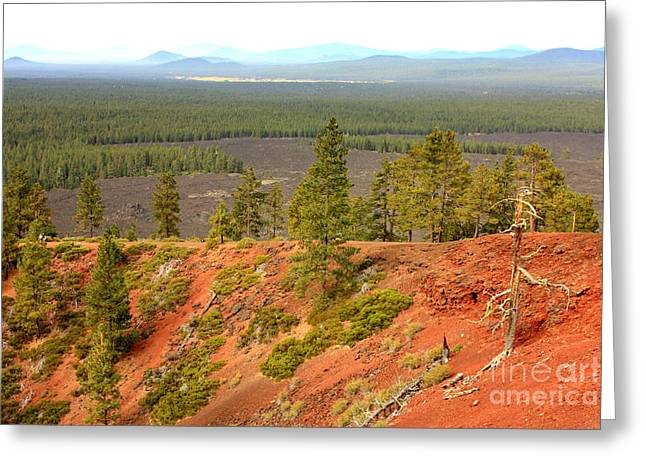 Red Dirt Greeting Cards - Oregon Landscape - View from Lava Butte Greeting Card by Carol Groenen