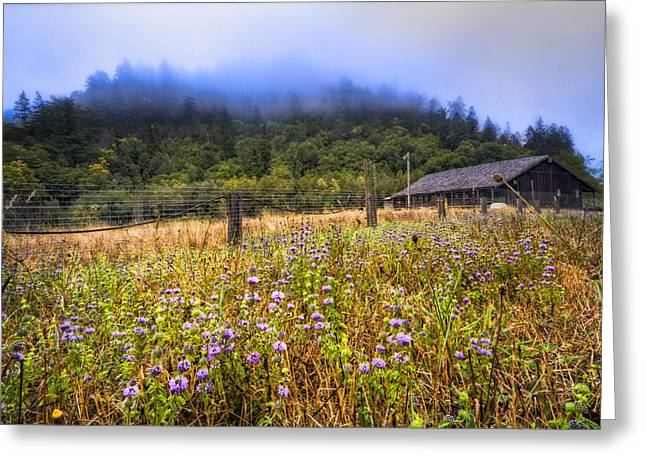Fenceline Greeting Cards - Oregon Scenery Greeting Card by Debra and Dave Vanderlaan
