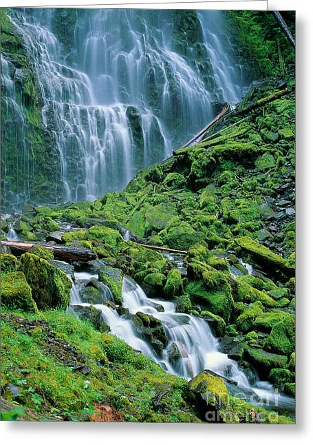 Howell Greeting Cards - Oregon, Willamette Valley Greeting Card by Michael Howell - Printscapes