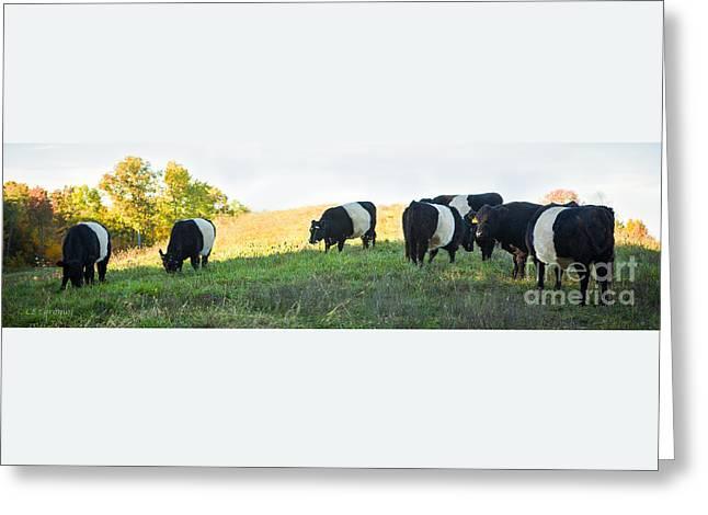 Oreos - Milk Included Greeting Card by Carol Lynn Coronios