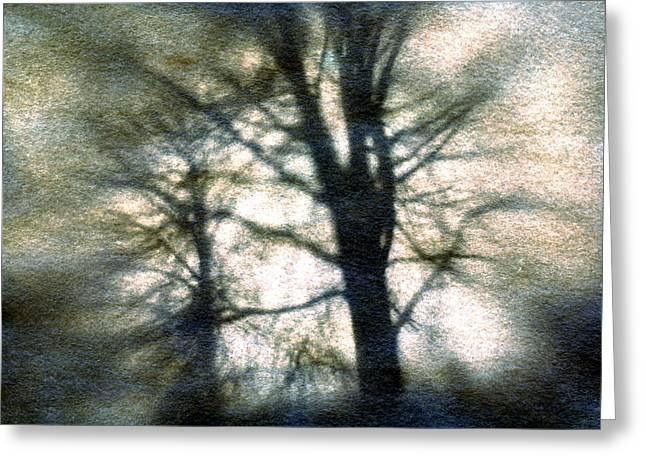 Original Tree Greeting Card by Diana Ludwig