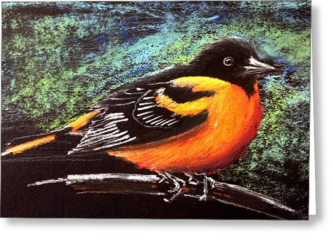 Oriole Pastels Greeting Cards - Oriole Greeting Card by Holly Whiting
