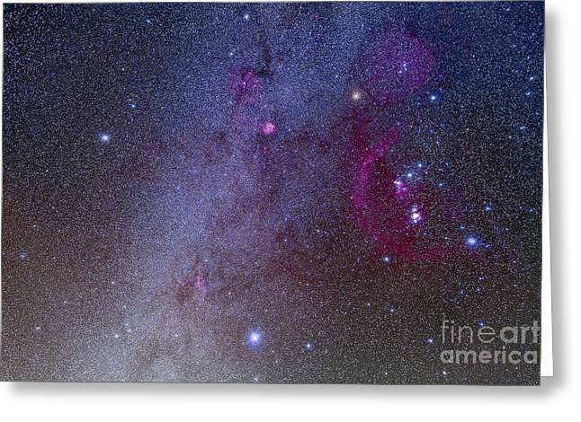 Monoceros Greeting Cards - Orion And Canis Major Showing Dog Stars Greeting Card by Alan Dyer