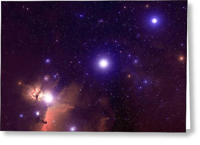 Horsehead Greeting Cards - Orions Belt Greeting Card by John Corban