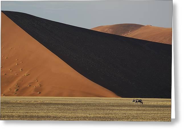 Gemsbok Greeting Cards - Oryx and Dunes Greeting Card by Christian Heeb