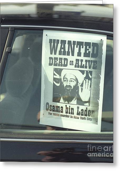 Bin Laden Greeting Cards - Osama Wanted Greeting Card by Jim and Emily Bush
