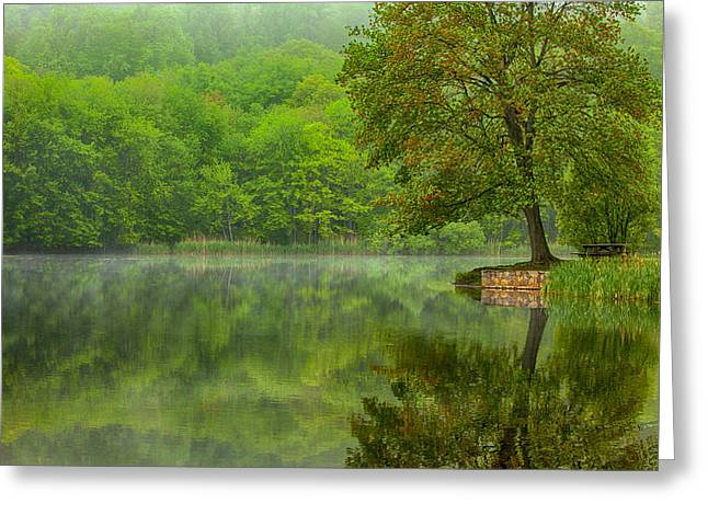 Reflecting Water Greeting Cards - Osbournedale Green Greeting Card by Karol  Livote