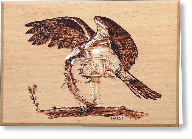 Osprey Pyrography Greeting Cards - Osprey 3 Greeting Card by Ron Haist