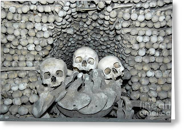Repository Greeting Cards - Ossuary Greeting Card by Michal Boubin