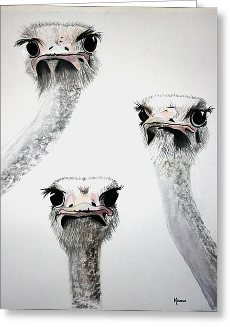Ostrich Feathers Pastels Greeting Cards - Ostrich Curiosity Greeting Card by Michele Turney