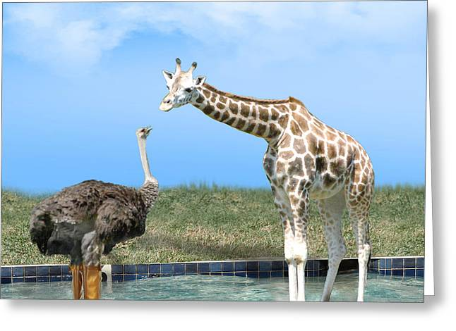 Wade Mixed Media Greeting Cards - Ostrich with Galoshes Greeting Card by Gravityx9  Designs