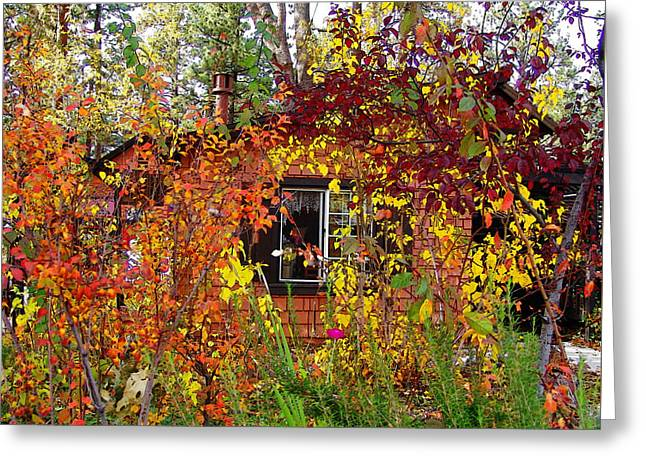 Idyllwild Greeting Cards - Other Side Of The Leaves Greeting Card by Glenn McCarthy Art and Photography