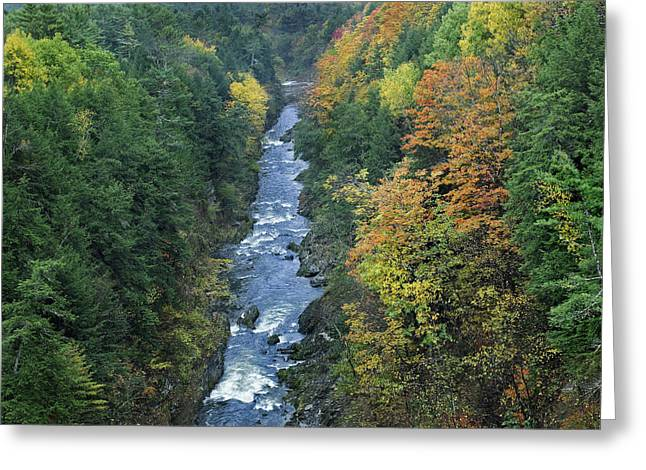 Quechee Greeting Cards - Ottauquechee River And Quechee Gorge Greeting Card by Tim Fitzharris