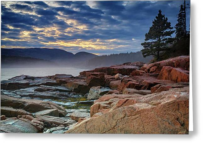 Otter Cove In The Mist Greeting Card by Rick Berk