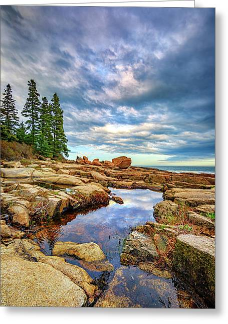 Otter Point Reflections Greeting Card by Rick Berk