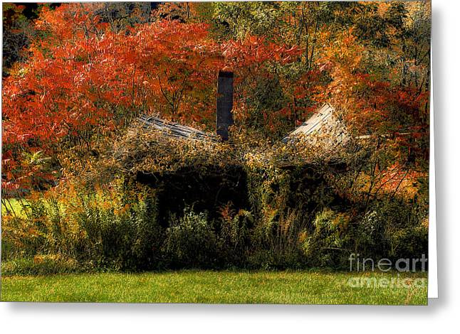 Shed Digital Greeting Cards - Ouch Greeting Card by Lois Bryan