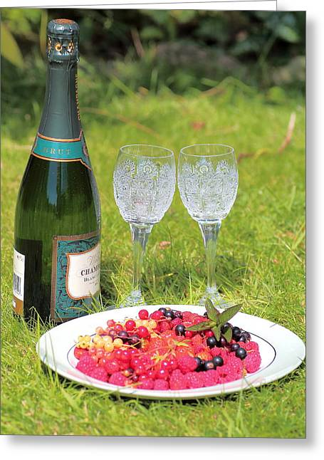 Champagne Glasses Greeting Cards - Summer Picnic  Greeting Card by Rumyana Whitcher