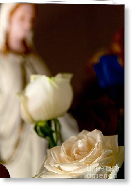 Virgin Mary Greeting Cards - Our Lady of Roses Greeting Card by DJ MacIsaac