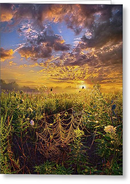 Out And About Greeting Card by Phil Koch