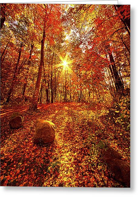 Out Here Greeting Card by Phil Koch