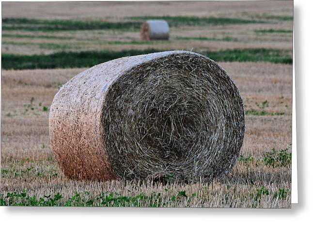 Hay Bales Greeting Cards - Out in the Fields - Detail Greeting Card by Richard Andrews
