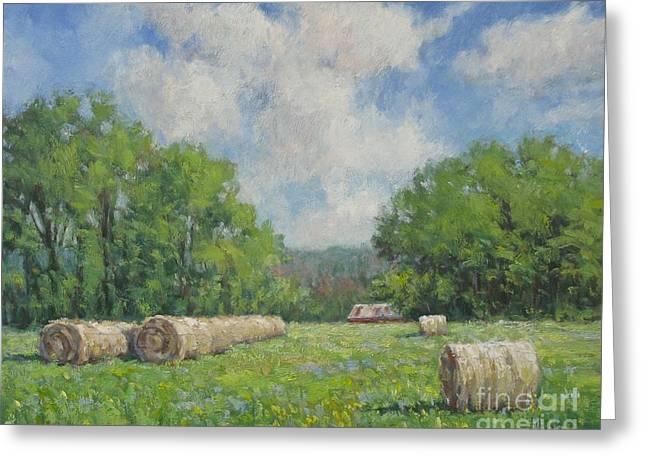 Pasture Scenes Jewelry Greeting Cards - Out My Back Door Greeting Card by Vickie Fears