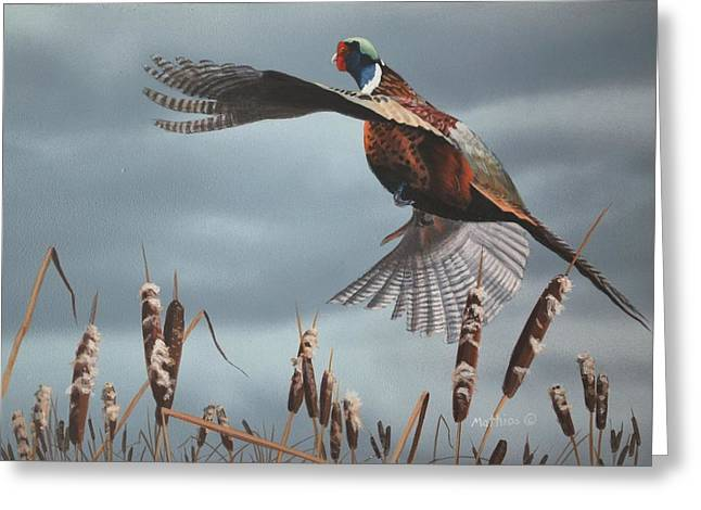 Peter Mathios Greeting Cards - Out of the Cattails Greeting Card by Peter Mathios