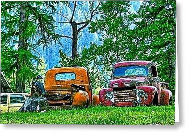 Old Trucks Greeting Cards - Out To Pasture Greeting Card by Brent Sisson