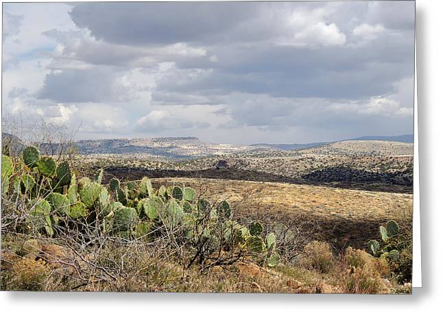 Cave Creek Cowboy Greeting Cards - Out Yonder Greeting Card by Gordon Beck