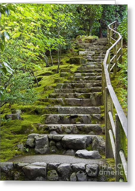 Recently Sold -  - Stepping Stones Greeting Cards - Outdoor Stone Stairway Greeting Card by David Buffington