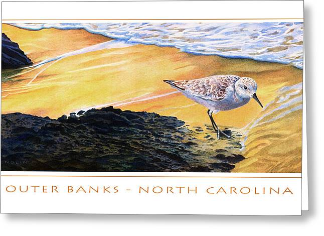Seashore Mixed Media Greeting Cards - Outer Banks Sanderling Greeting Card by Bob Nolin