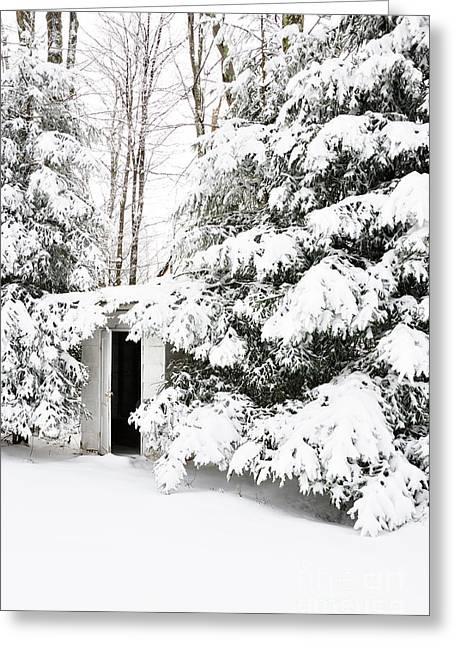Outdoor Toilets Greeting Cards - Outhouse in Pines Greeting Card by Thomas R Fletcher
