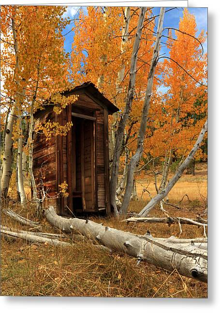 Wooden Outhouse Greeting Cards - Outhouse In The Aspens Greeting Card by James Eddy