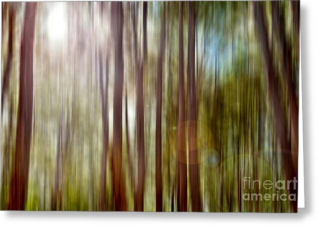 Nature Abstracts Greeting Cards - Outnumbered Greeting Card by Az Jackson