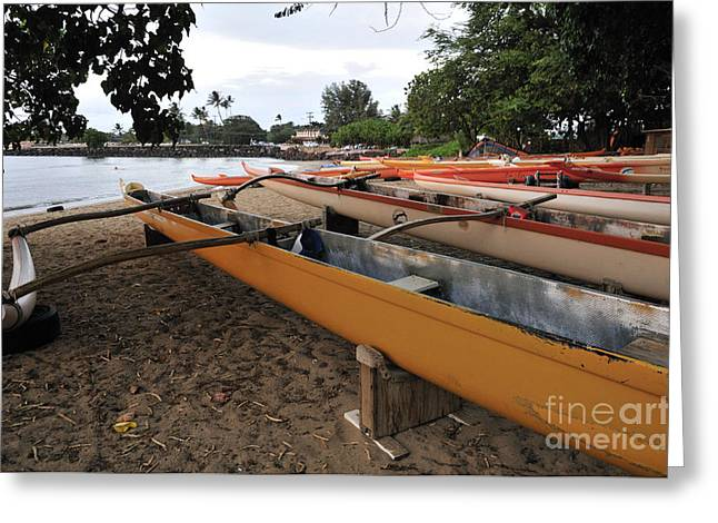 Outrigger Canoes Greeting Card by Andy Smy
