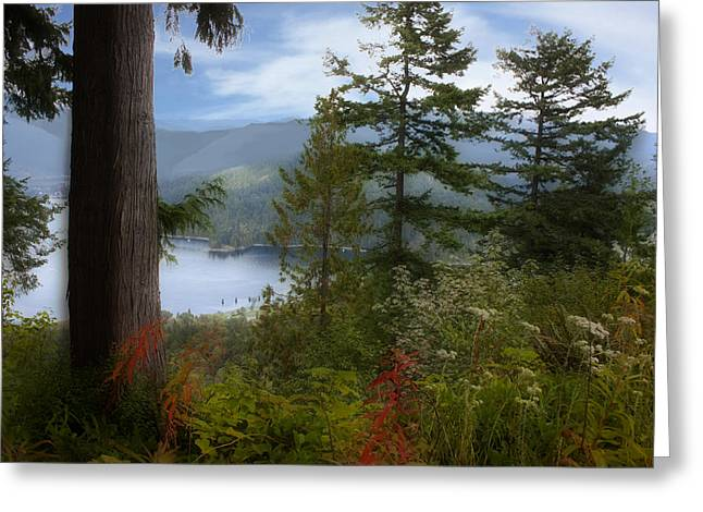 Burrard Inlet Greeting Cards - Over Burrard Inlet Greeting Card by Barbara  White