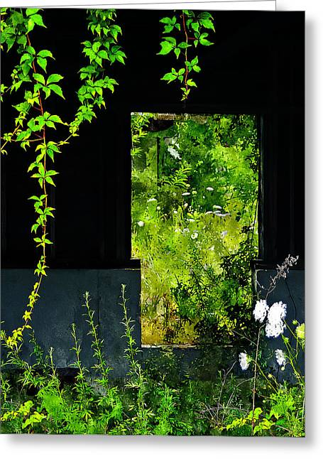 Abandoned Houses Digital Greeting Cards - Overgrown Greeting Card by Rick Mosher