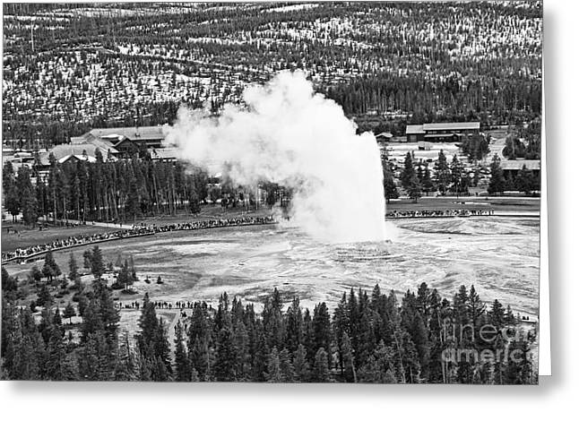 Overhead View Of Old Faithful Erupting. Greeting Card by Jamie Pham