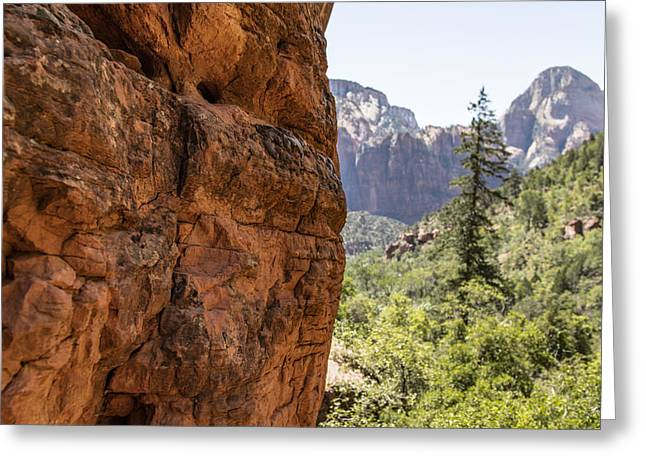 Nature Greeting Cards - Overlooking Zion National Park Greeting Card by John McGraw