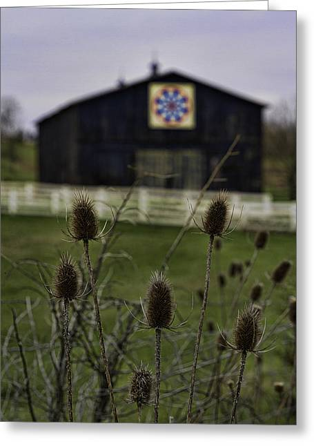 Owen County Quilt Barn, Kentucky Greeting Card by Rebecca Snyder