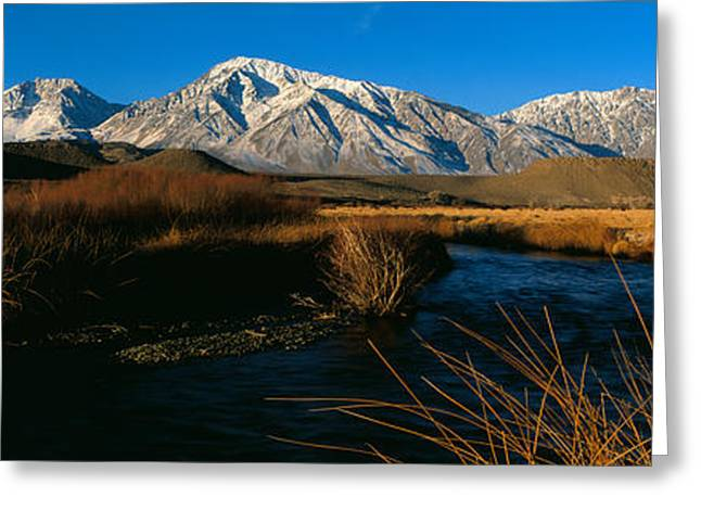 Owens River Valley Bishop Ca Greeting Card by Panoramic Images