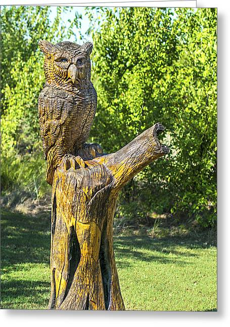 Saw Greeting Cards - Owl and the Oak Greeting Card by Bruce Jackson