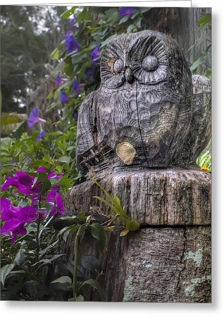 Wood Carving Greeting Cards - Owl Greeting Card by Dolly Sanchez