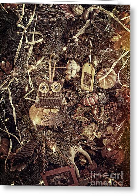 Fall Trees Greeting Cards - Owl Love The Fall Greeting Card by Sharlotte Hughes
