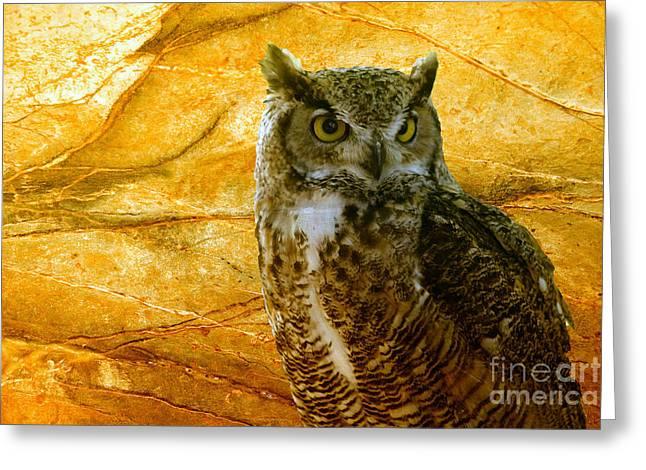 Owl Greeting Card by Teresa Zieba