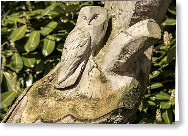 Owl Tree  Greeting Card by Rob Hawkins
