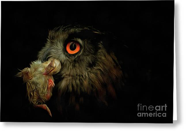 Owl With Prey Greeting Card by Michal Boubin