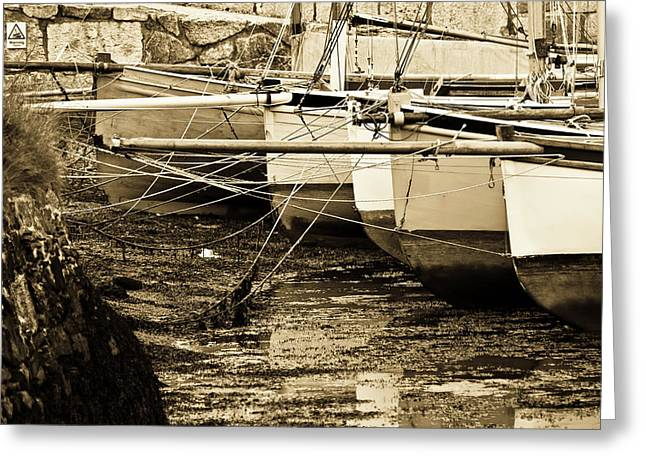 Working Boats Greeting Cards - Oyster Boats Laid up at Mylor Greeting Card by Brian Roscorla