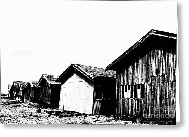 D.w. Greeting Cards - Oyster breeding sheds at Laramos Port on Bassin dArcachon Greeting Card by Sami Sarkis