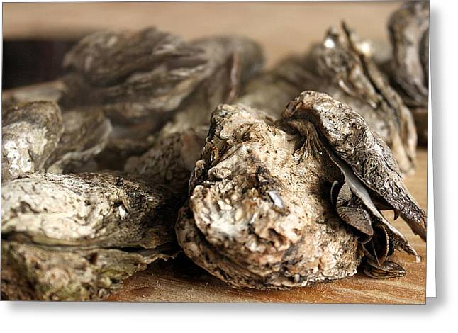 Greg Simmons Greeting Cards - Oyster Roast Greeting Card by Greg Simmons